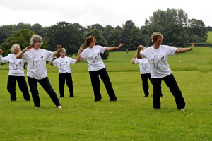 Tai Chi at Barrington Court Gardens